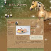 Spirit Dreams (Dreamcatcher & Horse Optional)