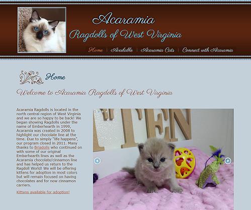 Acaramia Ragdolls of WV