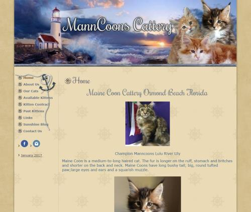 MannCoon Cattery