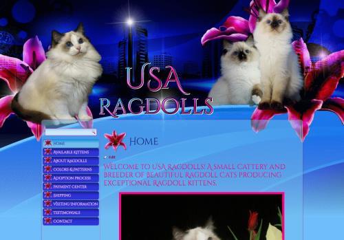 USA Ragdolls